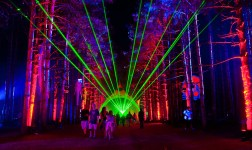 Electric Forest -Day 1 -The Day it Came Alive