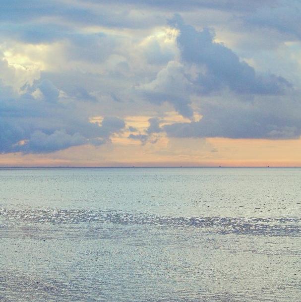 manon wethly ocean